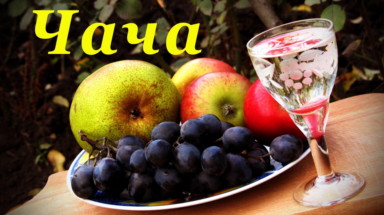 Рецепты чачи из винограда в домашних условиях