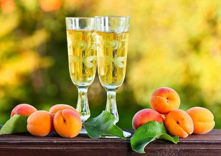 Рецепт абрикосового вина в домашних условиях