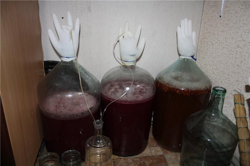 Виноградное вино в домашних условиях своими руками 70