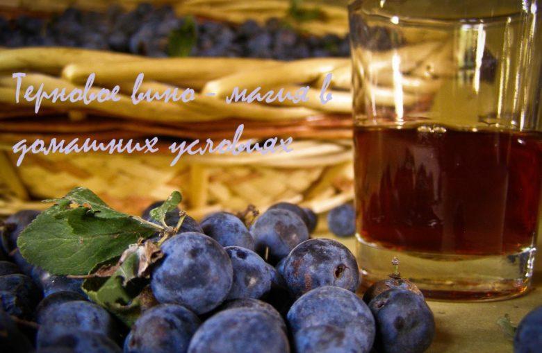 Вино в домашних условиях из терна рецепт 720
