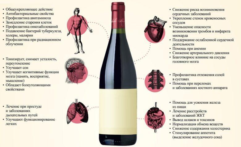 Молодое виноградное вино польза и вред