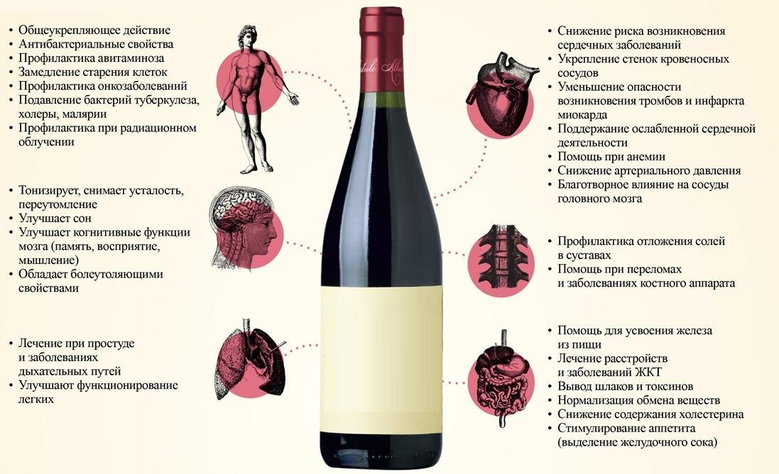 фиксаторы домашнее вино из винограда польза и вред дом