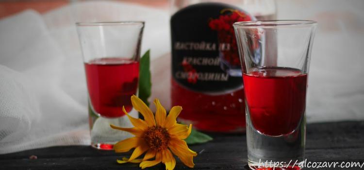 Рецепты спиртных напитков из красной смородины