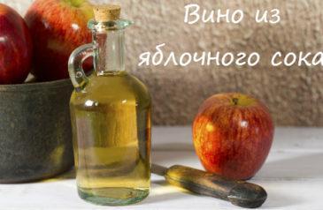 Рецепты вина из яблочного сока