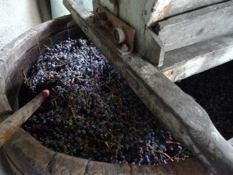Чан для давления винограда