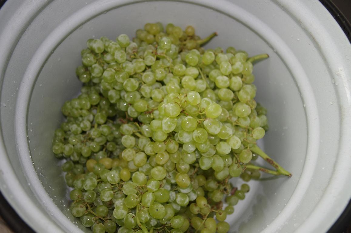 Этап подготовки сырья не менее важен, чем другие этапы в приготовлении вина.