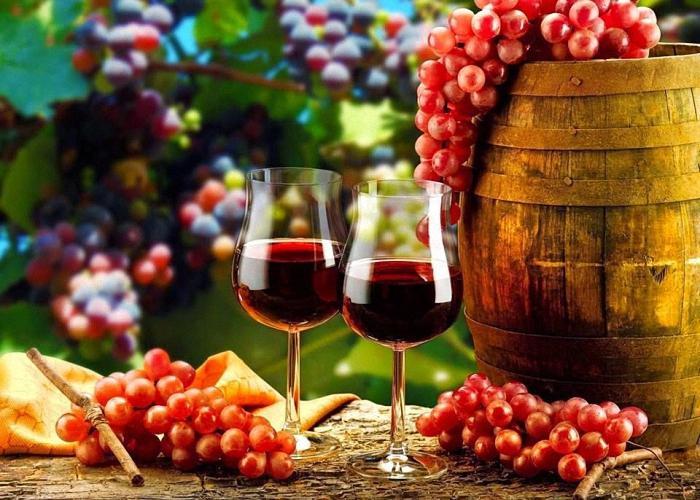 В виноделие из винограда Лидия содержится множество полезных для организма веществ, которые передаются с самых ягод винограда.
