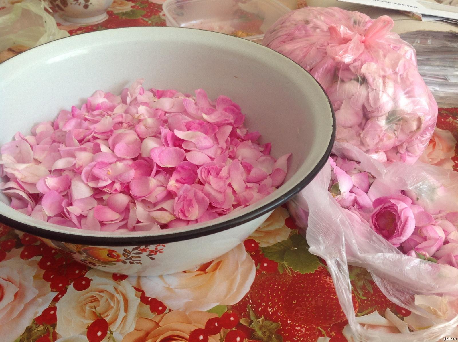 Рассмотрим самый распространенный рецепт приготовления вина из лепестков роз.