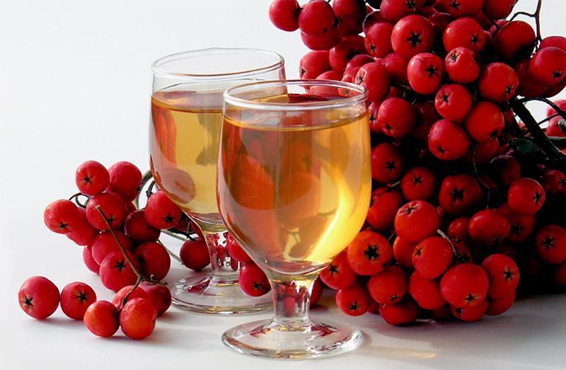 Рябина и бокал вина