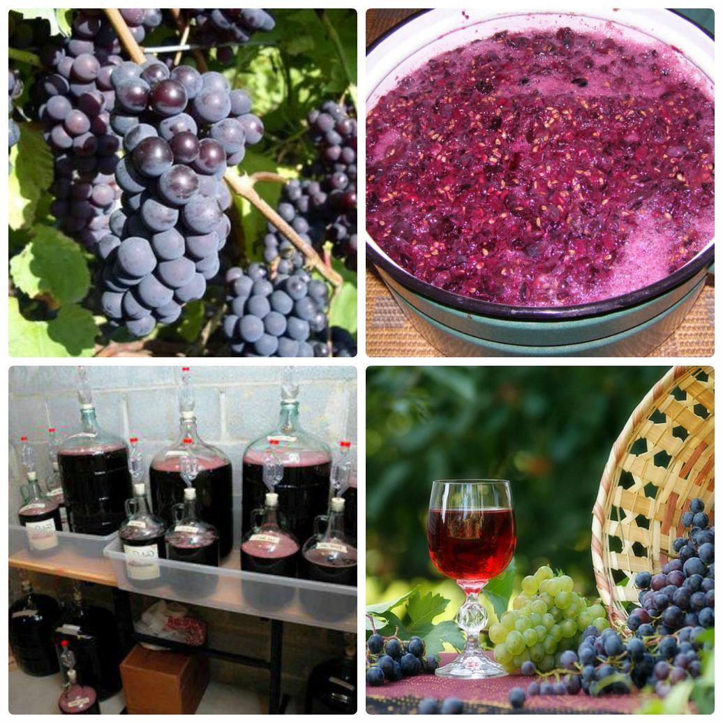 санаторий рецепт вина фото в домашних условиях ханны