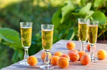 Домашняя наливка из абрикосов