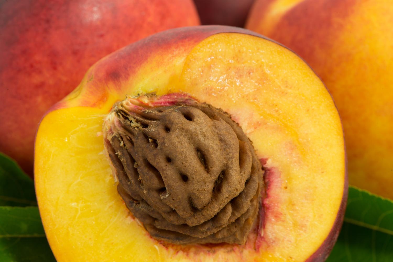 Ратафия из косточек персика
