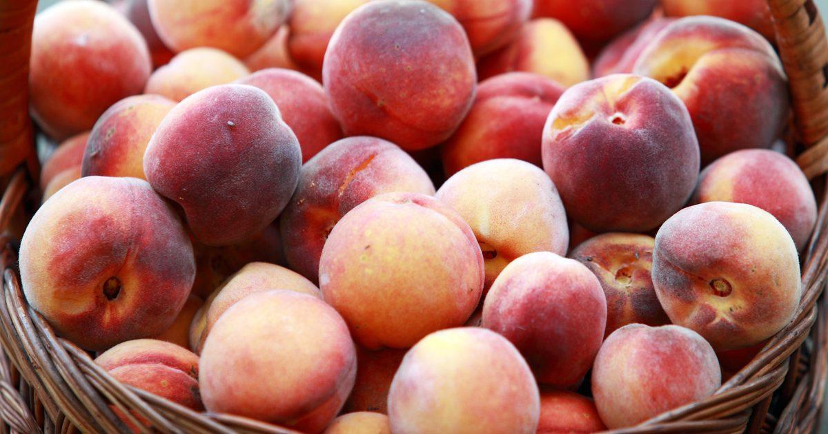 Рецепт наливки из персиков