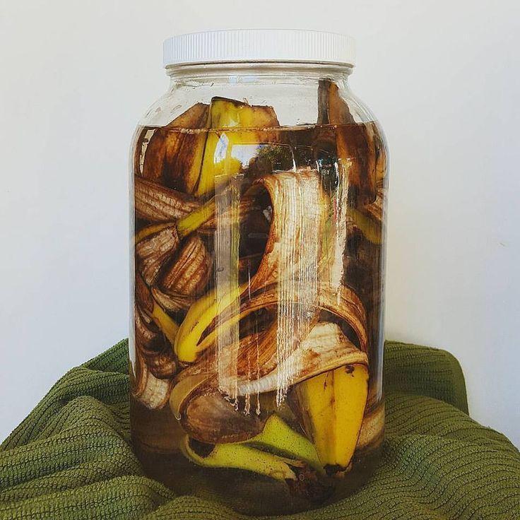 Изготовление банановой настойки