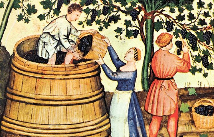 виноделие Италии